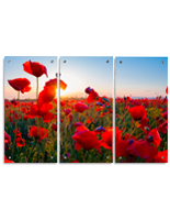 Red Poppy Field Triptych Wall Art