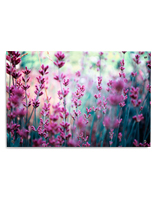 Lavender Acrylic Panel Print in Full Color
