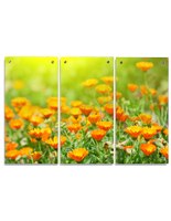 Floating Floral Acrylic Wall Art Panels