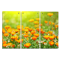 Floral Acrylic Wall Art Panels with High Definition Printing