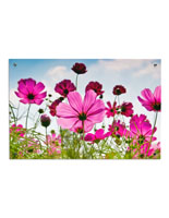 Floral Photo Acrylic Wall Art with Silver Standoffs
