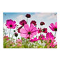 Vibrant Floral Photo Acrylic Wall Art