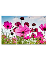 Pink Flower Triptych Wall Art with 3 Panels