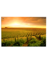 "30"" Tall Landscape Photography Wall Art"