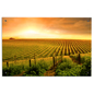Lightweight Landscape Photography Wall Art