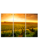 Triptych Landscape Photography with 12 Standoffs