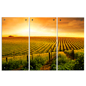 Wall Mounted Triptych Landscape Photography