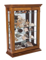 Economical Oak Curio Cabinet Propped with Marine Decor