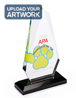 Acrylic rectangle teardrop award with 5 inch width