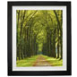 "30"" x 40"" Forest Print for Comforting Waiting Areas"