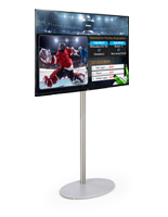 "49"" TV Digital Signage with Stand"