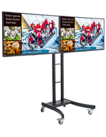 Dual E-Poster Kit for Business Promotions