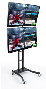 "(2) 55"" Advertising Monitors on Dual E-Poster Stand"