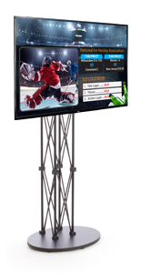 "Digital Signage Television 49"" for Advertising on Adjustable Stand"