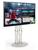 "55"" Electronic Signage Stand"