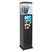 Digital Display Pedestals