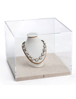 Jewelry Display Inside Gallery-Style Tabletop Display Box