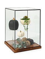 Tall wood and glass countertop display case with lift-off style topper