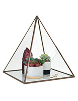 Glass pyramid display case holds items up to 12 inches