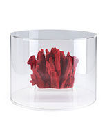 Acrylic round countertop display case with overall height of 12""