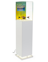 White Pedestal Digital Multimedia Display Case
