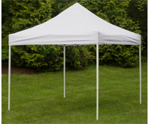 Portable Canopy with Truss Frame