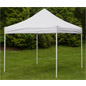 10 Foot Portable Canopy