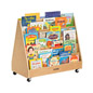 Mobile Double Sided Children's Book Display