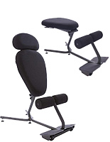 Ergonomic Desk Chairs