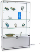 Silver Illuminated Display Case