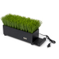 home décor black grass desktop charging station