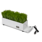desktop white plastic grass decorative charging planter