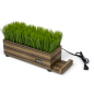 desktop zebra wood potted grass device charger