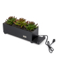 desktop black succulents charging station planter