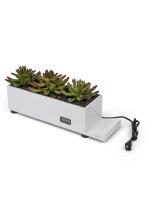 white desktop power charging succulent planter