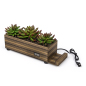 desktop zebra wood plastic succulents decorative charging planter