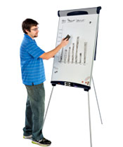 Flip chart easels with a whiteboard surface