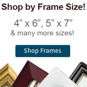 Discount Picture Frames Wholesale Priced Stock Photo Framing