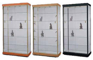 This collectors display case features a full-view design.