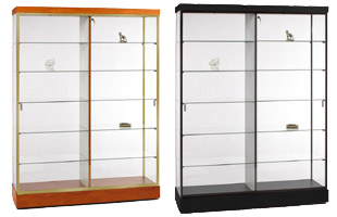 This collector display case features a divided case to showcase two different themes.