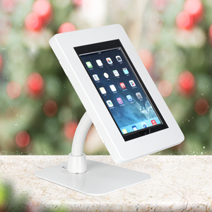 iPad Kiosks for Holiday Shopping