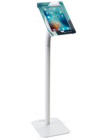Printed 12.9 Inch iPad Kiosk for Retail Stores