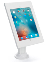iPad Pro 12.9 Holder for Retail Environments
