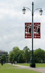 Lamp Post Banners are Ideal for Placement on University Campuses