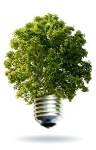 Environmentally-Friendly LED Bulbs