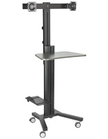 Dual Monitor Sit Stand Cart for Universities
