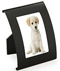 "Black Curved Steel Frame for 2"" x 3"" Photographs"