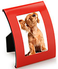 "Red Curved Steel Frame for 2"" x 3"" Photos"