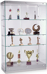 modern trophy case with frameless design