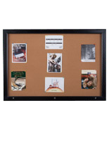 Enclosed Bulletin Board Cabinet